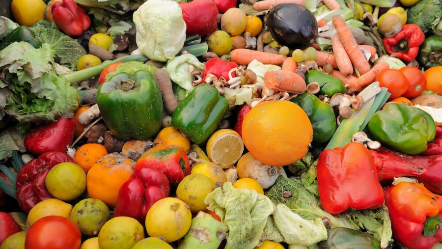 Food Waste & Hunger